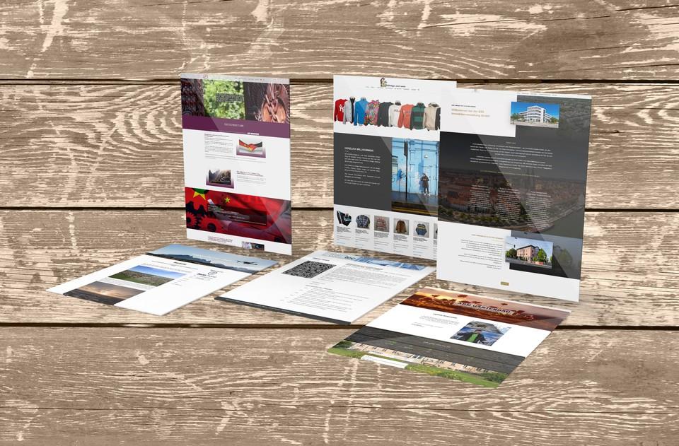 Webdesign Harz, Homepage und Webshop in Sülzetal erstellen lassen
