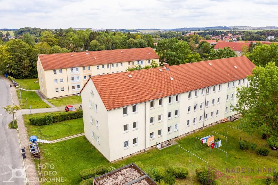 Luftbilder Elbingerode